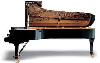 Piano King of the Instruments